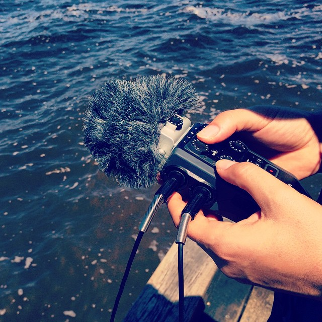 Hydrophone recording in the Noosa Biosphere Reserve